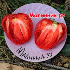 "Томат ""ГРУШАНКА МИНУСИНСКАЯ"""