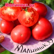 """Томат """"МАЙСКИЙ УЛЬТРАРАННИЙ"""""""