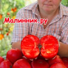 """Томат """"ВКУСНАЯ ОХОТА"""""""