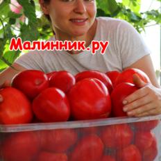 """Томат """"СЛАДКОЕ ГОВЯЖЬЕ СЕРДЦЕ"""" фото"""